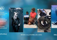 All For Blue: Καθαρισμός παραλίας στην Τήνο